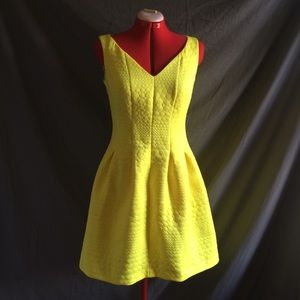 Taylor Lemon Yellow Fit & Flare Textured Dress 6
